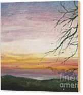 View Of The Valley At Dusk Wood Print
