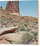 View Of Three Gossips In Arches Np-ut  Wood Print