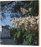 View Of Vltava River From Shutter Island Spring Prague Europe Wood Print