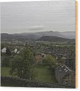 View Of Wallace Monument And Houses And Surrounding Areas Wood Print