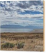 View Of Wasatch Range From Antelope Island Wood Print