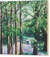 View Of Woodside Lake Wood Print