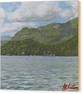 View On Lake Lure Wood Print
