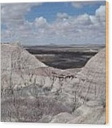 View On The Blue Mesa Trail Wood Print