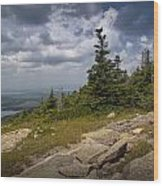 View On Top Of Cadilac Mountain In Acadia National Park Wood Print