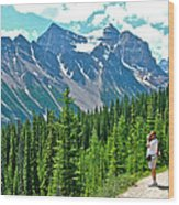 View On Trail To Lake Agnes In Banff Np-alberta Wood Print