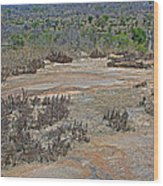 View One From Matekenyane In Kruger National Park-south Africa Wood Print