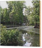 View Over Magnolia Plantation Lake Wood Print