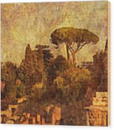 View Over The Forum In Rome Wood Print