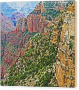 View Six From Walhalla Overlook On North Rim Of Grand Canyon-arizona Wood Print