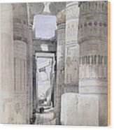 View Through The Hall Of Columns Wood Print by David Roberts