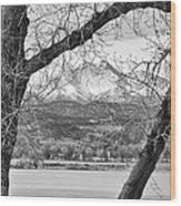 View Through The Trees To Longs Peak Bw Wood Print