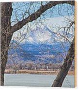View Through The Trees To Longs Peak Wood Print