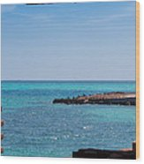 View Through The Walls Of Fort Jefferson Wood Print