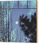 View Thru Frost Wood Print