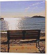 Viewing Boston Wood Print