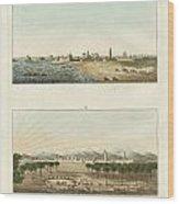 Views Of Africa Wood Print