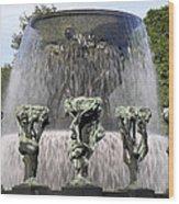 Vigelands Fountain 2 Wood Print