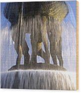 Vigelands Fountain 3 Wood Print