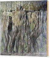 Vigelands Fountain Wood Print