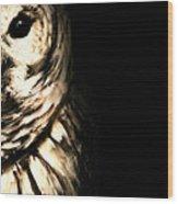 Vigilant In Darkness Wood Print