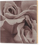Vignette Rose. Wood Print
