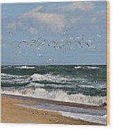 Vilano Beach Wood Print