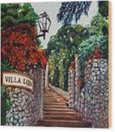 Villa Lidia Wood Print