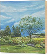 Village Garden Wood Print