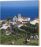 Village In Azores Islands Wood Print