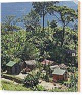 village in eastern Madagascar Wood Print