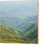 Village Of Mist 12 Wood Print