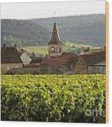 Village Of Monthelie. Burgundy. France Wood Print