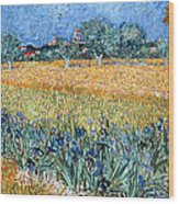 Field With Flowers Near Arles Wood Print