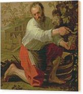 Vine Grower, 1628 Oil On Canvas Wood Print