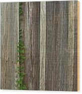 Vine L Siding Wood Print