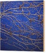 Vine On Blue Wall Wood Print
