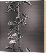 Vine On Iron Wood Print