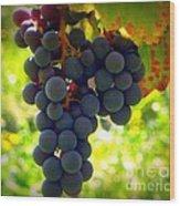 Vine Purple Grapes  Wood Print