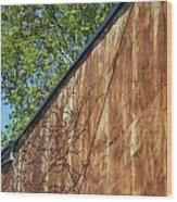 Vines And Rust Wood Print