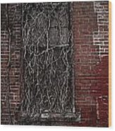 Vines Of Decay Wood Print by Amy Cicconi