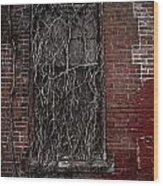 Vines Of Decay Wood Print