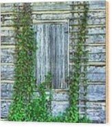 Vines Of Metamora Wood Print