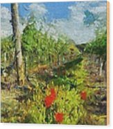 Vineyard And Poppies Wood Print