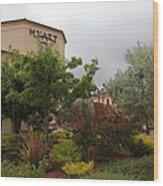 Vineyard Creek Hyatt Hotel Santa Rosa California 5d25795 Wood Print by Wingsdomain Art and Photography