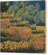 Vineyard Fall Wood Print