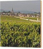 Vineyard In Front Of The Village Of Meursault. Burgundy Wine Road. Cote D'or.burgundy. France. Europ Wood Print by Bernard Jaubert