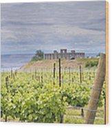 Vineyard In Maryhill Washington State Wood Print