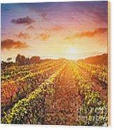 Vineyard Wood Print by Mythja  Photography