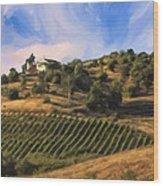 Vineyard Near Avila Beach Wood Print